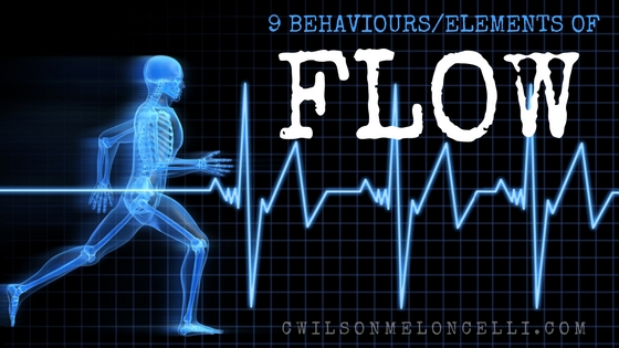 the number 1 athletic optimal state and its 9 reported behaviours, optimal state, optimal athletic state, flow state, elements of flow, behaviours of flow, 9 elements of flow state, hack into the flow state, neurochemicals of flow state, 9 behaviours or elements of flow state