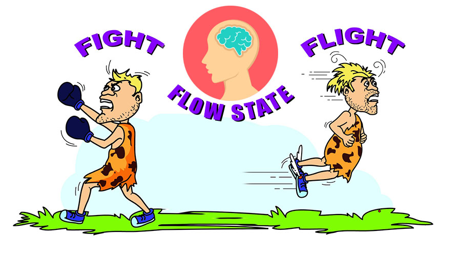 how to enter flow state quickly, how to enter into flow state quickly, how to get into the flow state quickly, how to enter flow state at will, flow state athletes, how to enter flow state of mind, fight or flight, fight or flight response